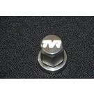 TVR wielmoer met logo, RVS